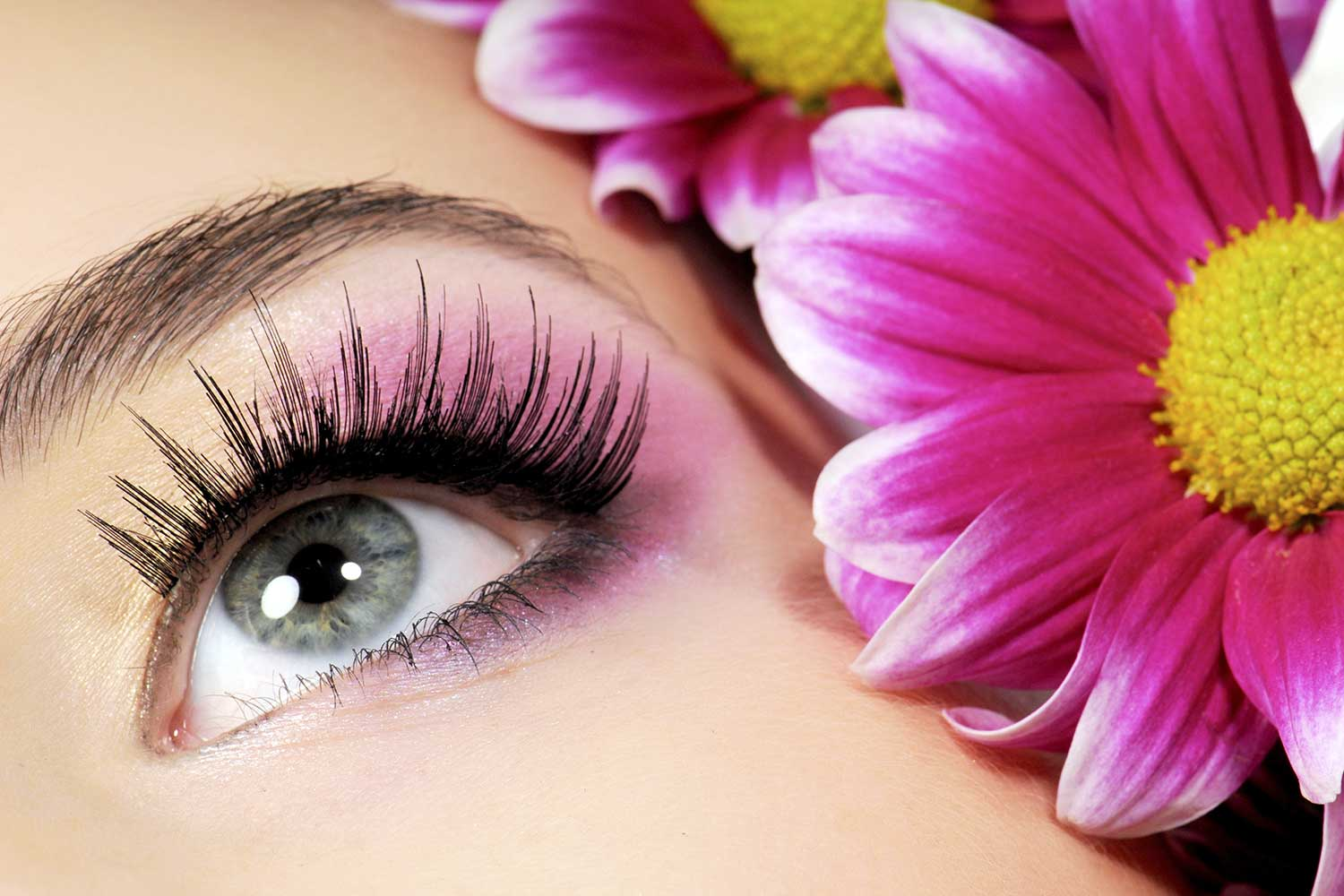 3-day-eyelash-eyebrow-technician-course-north-east